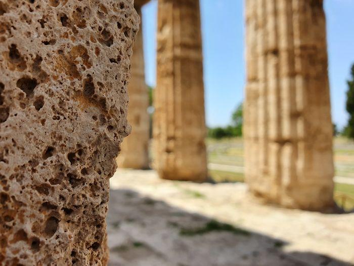Close-up of old ruins