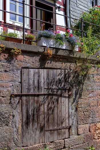 Architecture Built Structure Plant Building Exterior Window Day Building Flowering Plant Flower No People Nature Growth House Potted Plant Wood - Material Outdoors Wall Low Angle View Old Wall - Building Feature Window Box Brick Flower Pot Altstadt Marburg An Der Lahn