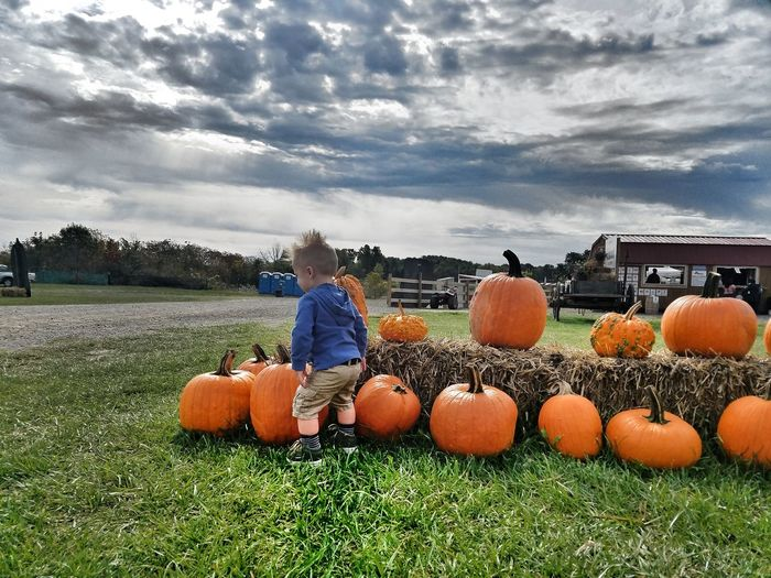Pumpkin Cloud -