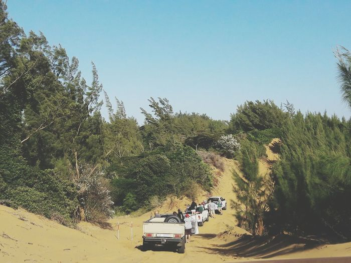 Bundu bashing Transportation Tree Sand Growth Day Mode Of Transport Land Vehicle Outdoors Clear Sky Adult Motorcycle People Desert Sky Nature Sand Dune Beauty In Nature The Great Outdoors - 2017 EyeEm Awards