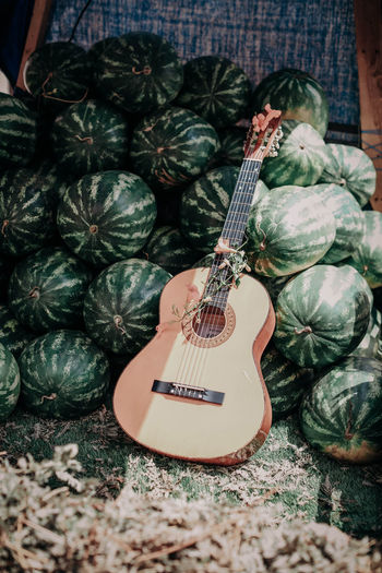 Guitar and lots of watermelons in the summer. hippie and freedom concept