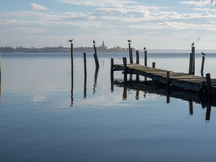 Pier in Altwarp Water Sky Tranquility Cloud - Sky Wood - Material Sea Scenics - Nature Post Tranquil Scene Nature Reflection Beauty In Nature Wooden Post Waterfront No People Pier Beach Day Transportation Outdoors Baltic Sea Stettiner Haff Ueckermünde