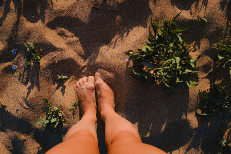 Never alone with mother nature. Nature On Your Doorstep Feetselfie Sandy Beach waiting game Stand For Land Human Body Part Human Leg Legs Real People