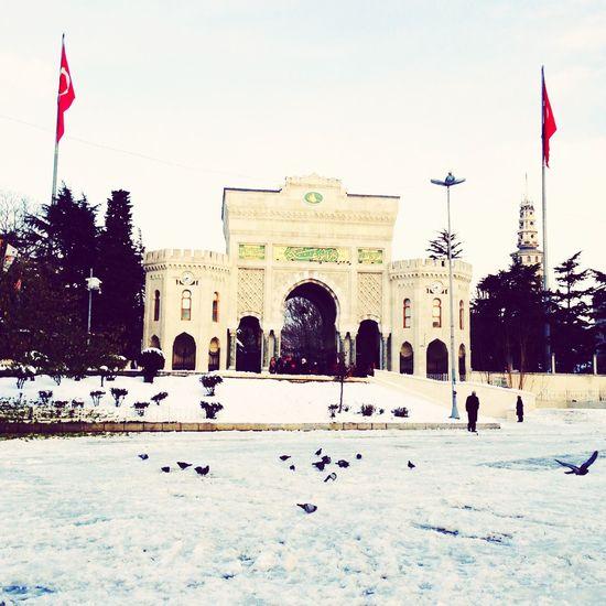 İstanbul Üniversitesi ....