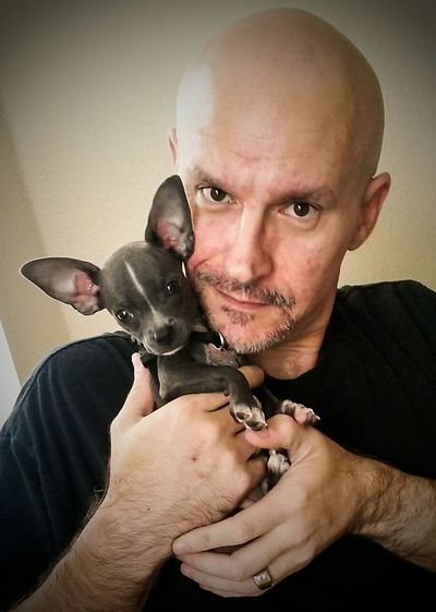 Poncho Kilo Chihuahua Puppy Chihuahuas<3 Chihuahua Love ♥ My Dogs Are Cooler Than Your Kids King Of The World Sebastian, Fl