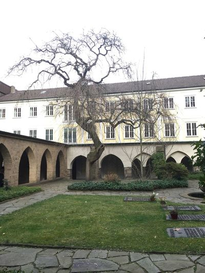 Architecture Building Exterior Built Structure Tree Outdoors Travel Destinations No People City Day Sky Stadtessen Germany Chathedral