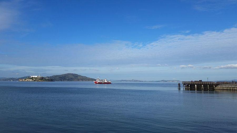 Bay area, blue sky, and free life.