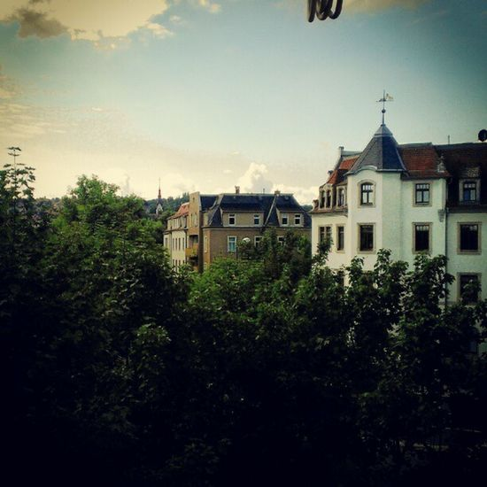 Good morning Dresden, slept well too?