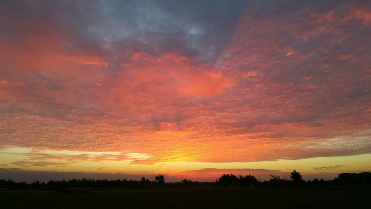 sunset, orange color, silhouette, beauty in nature, dramatic sky, cloud - sky, nature, scenics, sky, tranquil scene, landscape, tranquility, field, tree, no people, outdoors, travel destinations, day