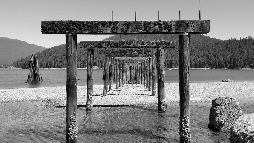 Beautiful British Columbia Blackandwhite Photography Barnett Marine Park Burrard Inlet Low Tide