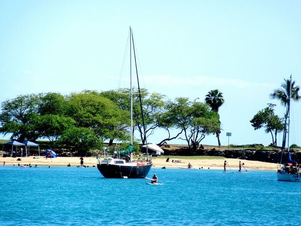 Nautical Vessel Transportation Sea Clear Sky Tree Water Sky Day Outdoors Nature Beach Sailing No People Landscape_photography Backgrounds Beach Photography Sand & Sea Hawaii Nei Leisure Activity Travel Destinations Tranquil Scene Relaxation Beach Life Landscape_Collection Postcard Picture