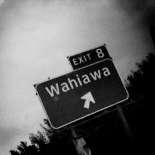 Exit8 Wahiawa Hometown Doubt_me