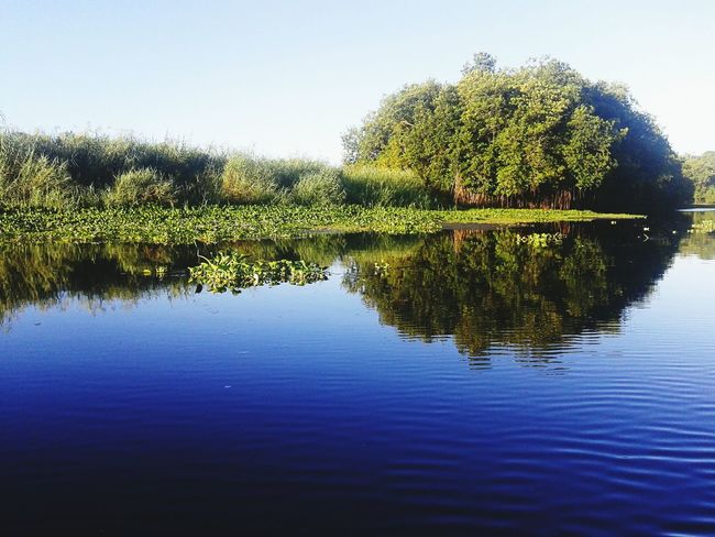 Forest Photography Forest View Adventure Guatebella Tranquility Reflection Lake