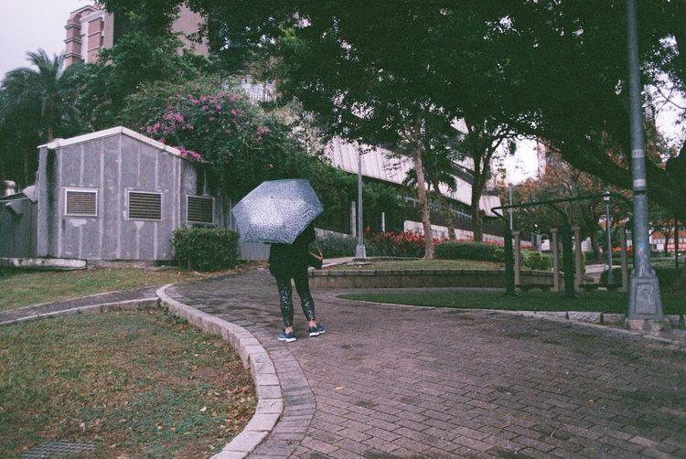 Rear view of woman walking on street during rainy season