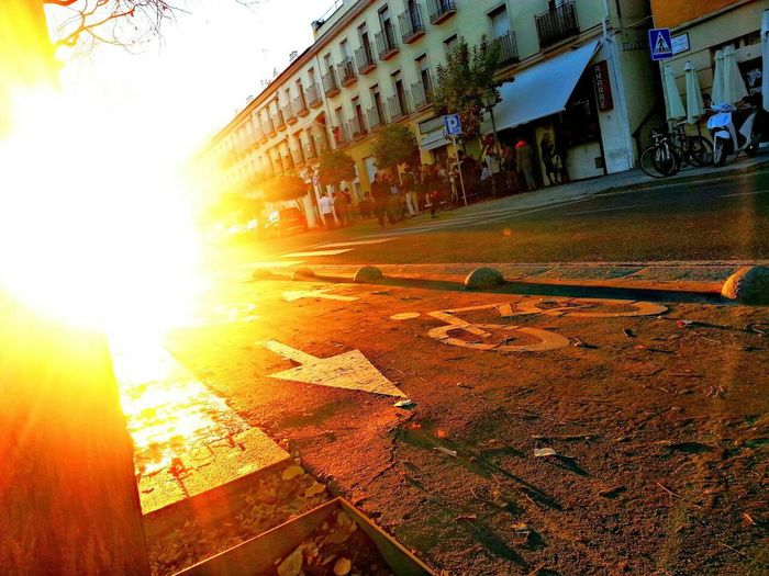 Streetphotography Sun Paseo De La Ribera Córdoba
