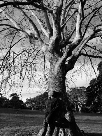 Thinking about you... Tree Tree And Sky Tree Trunk Bare Tree People Photography People Autumn Trees