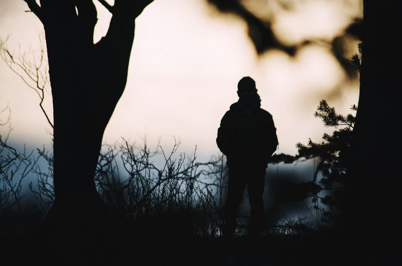 Silhouette of person standing by tree