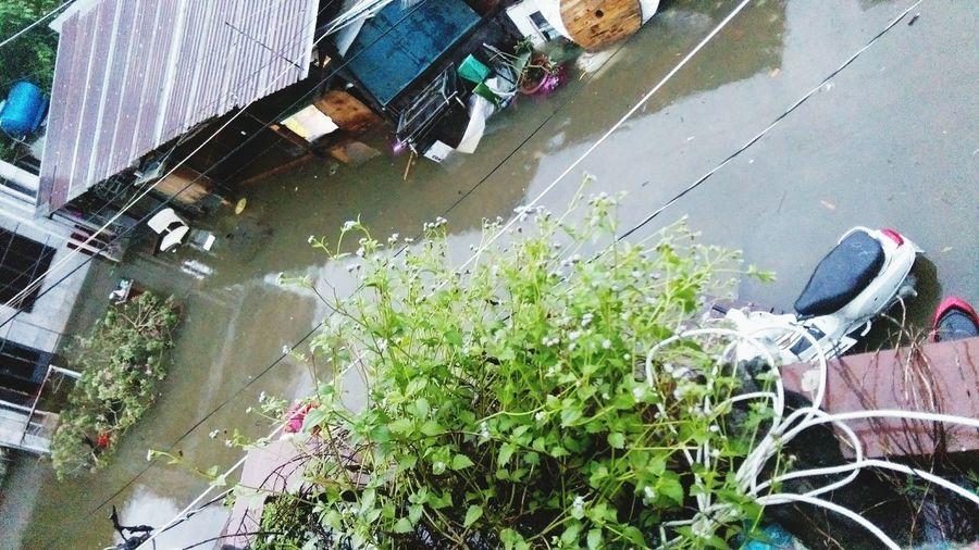 Flooding after a big windy rain huhhu. My bike becomes a boat. Flooding Bigrain