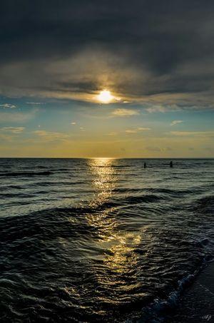 Sea Enjoying The Sunset Beach Shtormovoe Enjoying The Sun Swimming