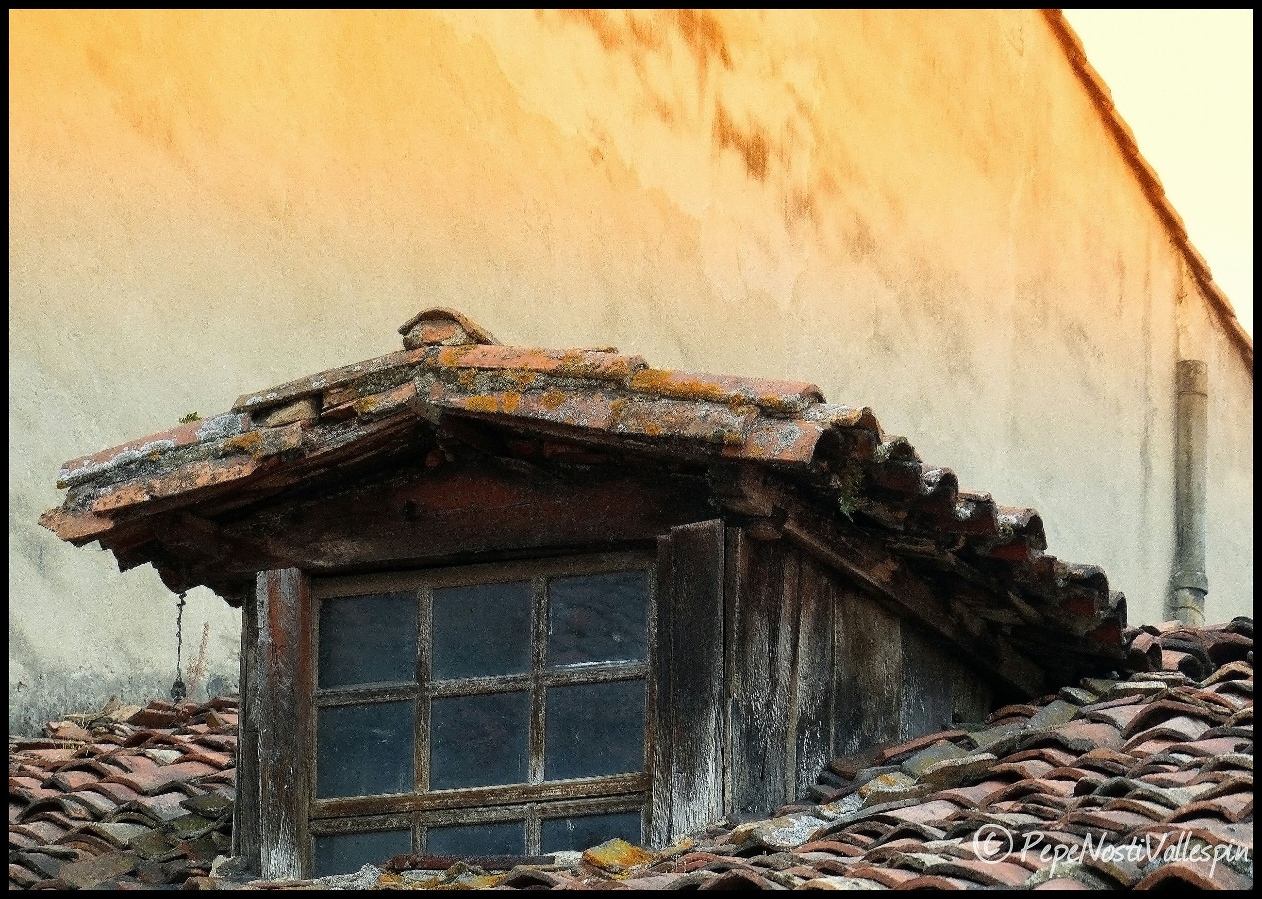 built structure, outdoors, day, sky, deterioration, no people, run-down, close-up, nature, vignette
