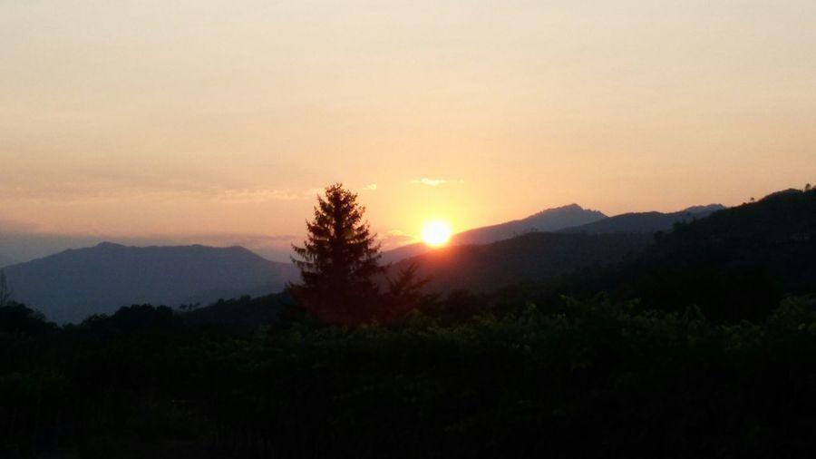 Sunset Countryside Vallearroscia Liguria EyeEm Liguria