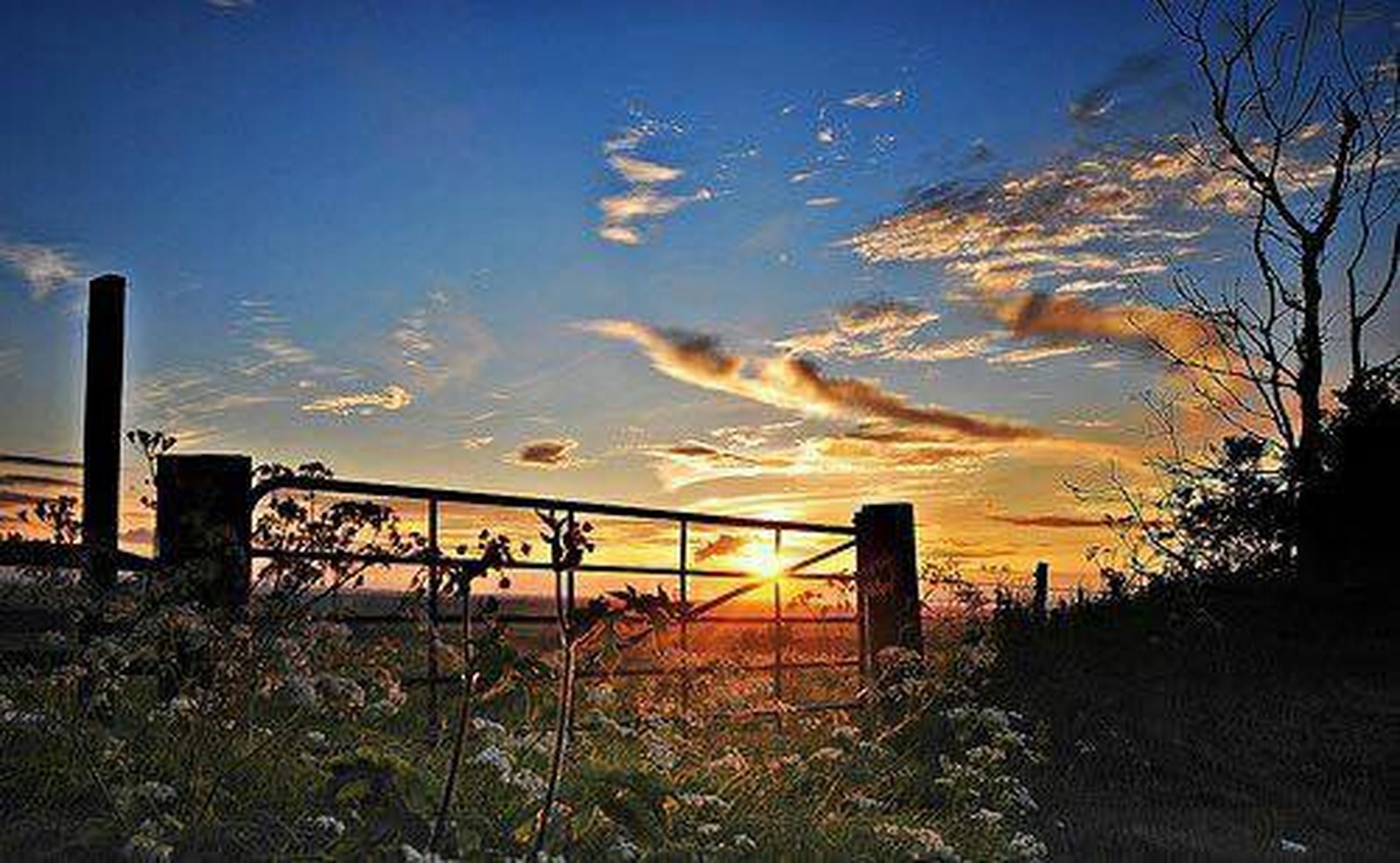 sky, blue, tranquility, sunset, fence, plant, railing, nature, tranquil scene, cloud - sky, scenics, beauty in nature, growth, cloud, field, outdoors, tree, landscape, no people, grass