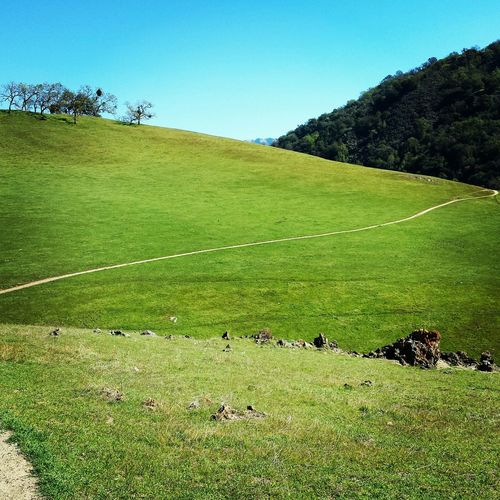 freedom! ! Happy Just Having Fun Smile Enjoying Life Landscape_Collection Chosen Paths Hiking Taking Photos One Of My Favorite Things California jus let it go...