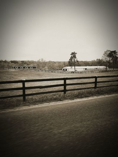 Retro Blackandwhite Black And White Collection  Black And White Landscape Farmland Natural Beauty Human Influence Farm Life Countryside Virginia Countryside Virginia