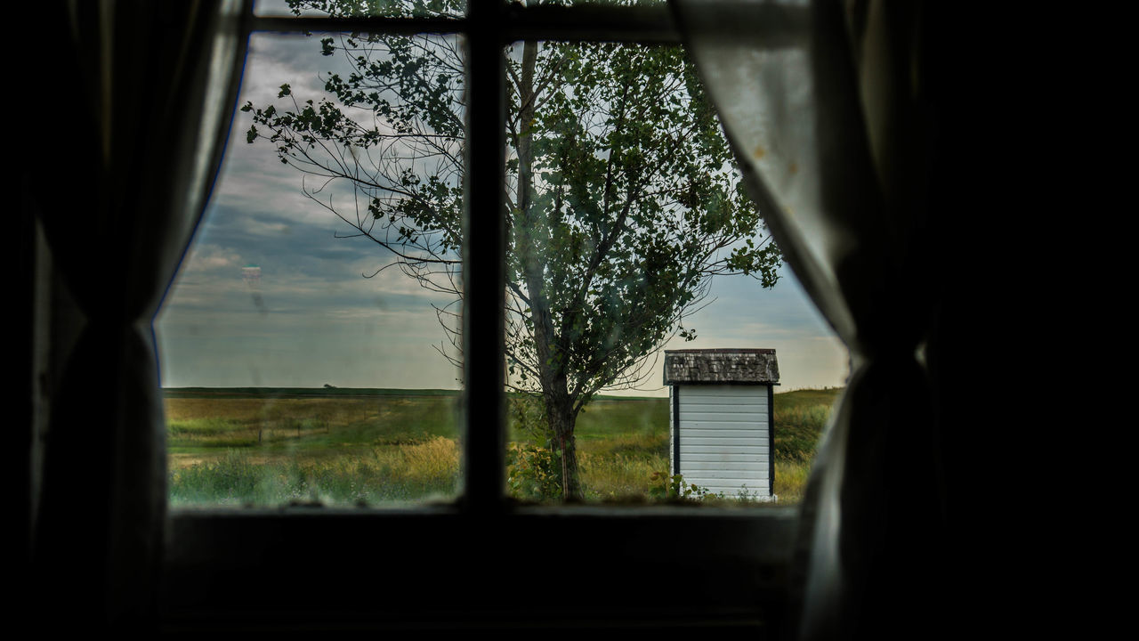window, tree, no people, focus on background, text, day, communication, indoors, sky, nature, architecture, close-up