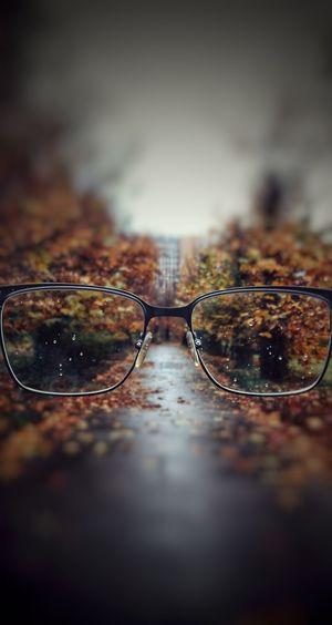 Yesterday RainyDay Autumn Collection Autumn🍁🍁🍁 Glasses Igersromania