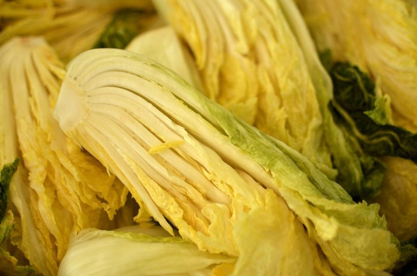 Making kimchi Cabbage Local Food Slow Food Korea Food Korean Food Kimchi Food And Drink Food Freshness Vegetable Raw Food Yellow Close-up Healthy Eating Day