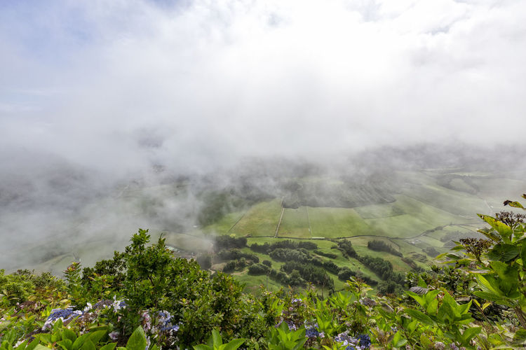 Pastures and clouds from the rim of the Sete Cidades caldera on Sao Miguel in the Azores. Sao Miguel Azores Açores Sete Cidades Hike Trek Trail Landscape Caldera Crater Lagoa Azul Verde Seca Alferes Flowers Hydrangea Ginetes Varzea Clouds Fog Travel Tourism Destination