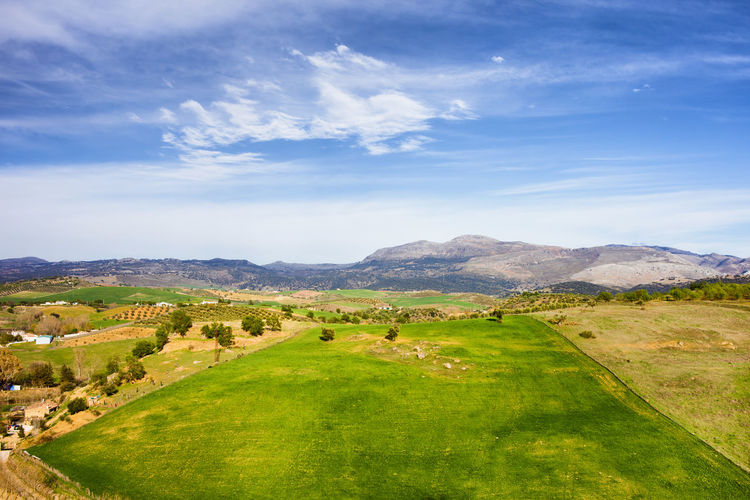 Andalusia landscape in Spain Andalucía Andalusia Country Grass Iberian Peninsula Rural SPAIN Spanish Vista Countryside Europe Grassland Green Color Iberian Landscape Meadow Nature No People Outdoors Region Rural Scene Scenery Scenics Southern Spain Tranquility