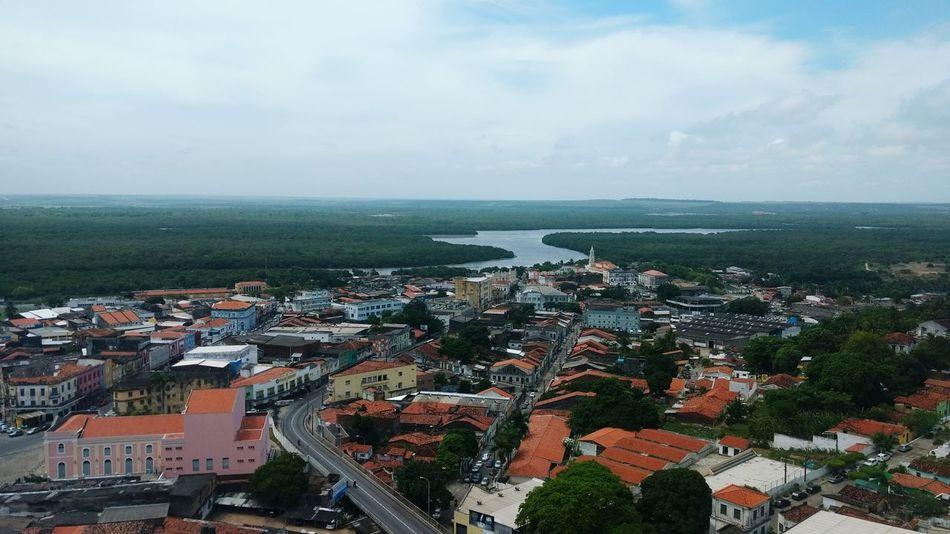 Horizon Horizon View João Pessoa - Brasil Green Trees Sky