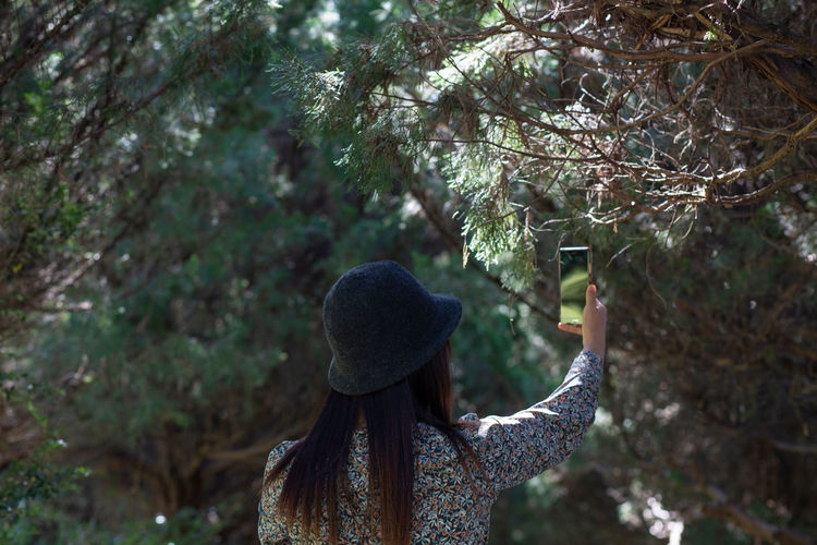 Rear view of woman standing by tree in forest