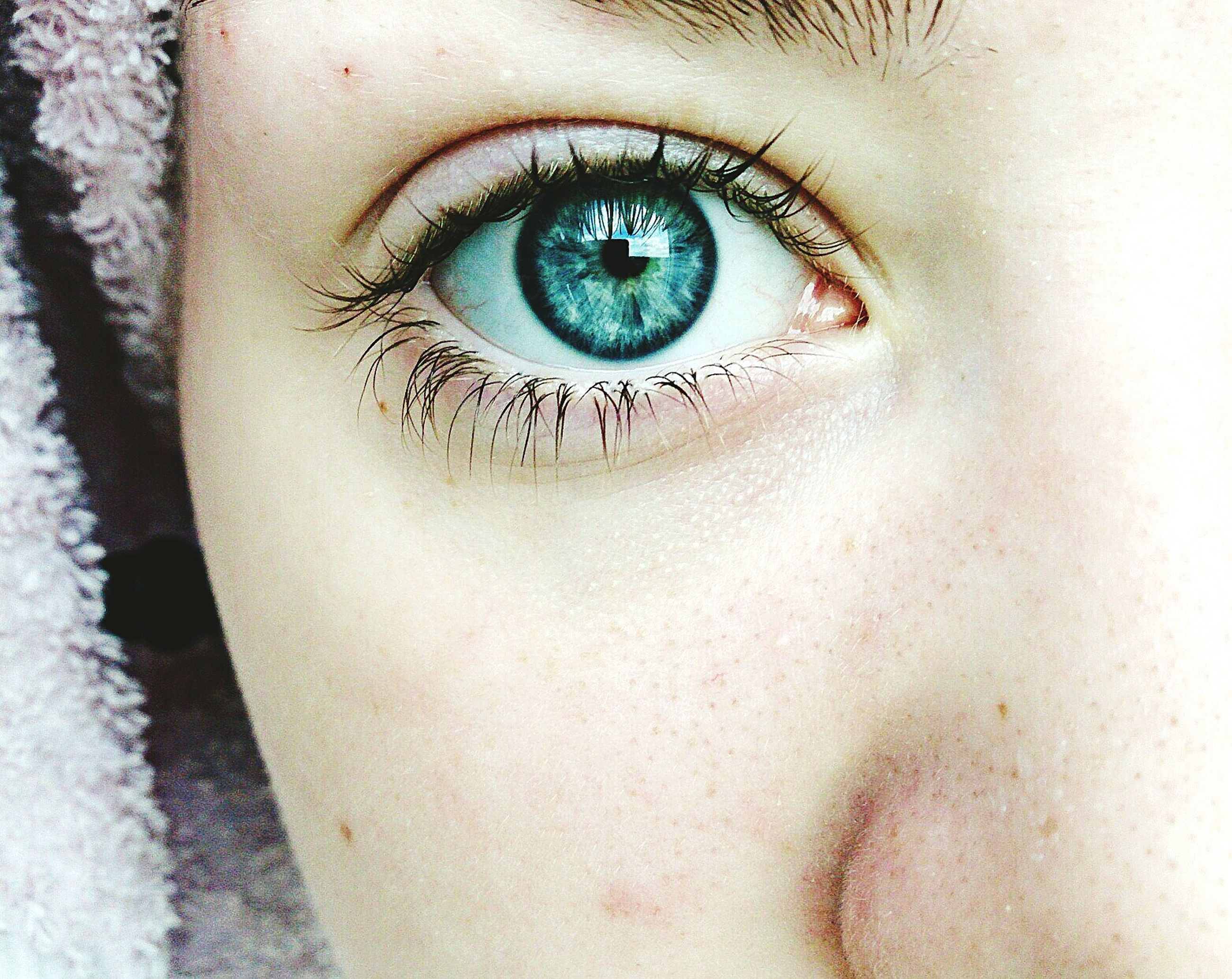 human eye, close-up, eyelash, eyesight, human skin, part of, portrait, human face, extreme close-up, sensory perception, lifestyles, iris - eye, eyeball, cropped, detail, macro, extreme close up, selective focus