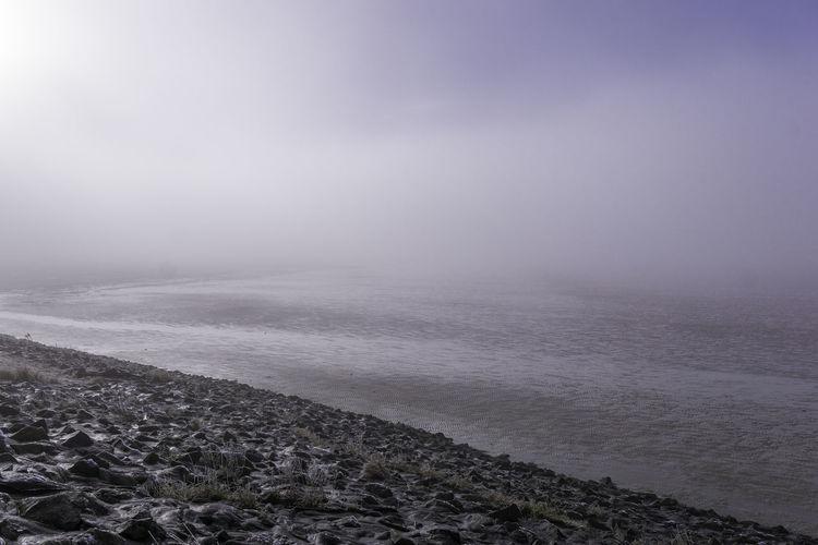 sun and fog...