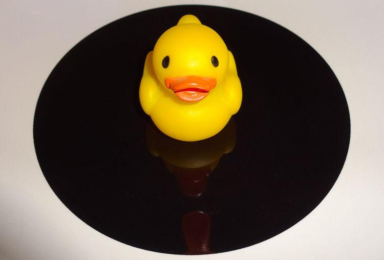 Quack Q