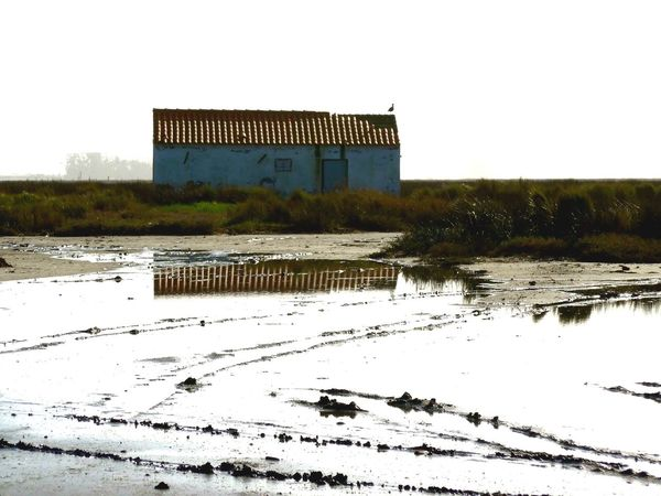 Pastel Power Quiet Peaceful Silent Simplicity Sophistication Maria Celeste Art EyeEm Nature Lover Eyemphotography JustMe Pardilhó Portugal