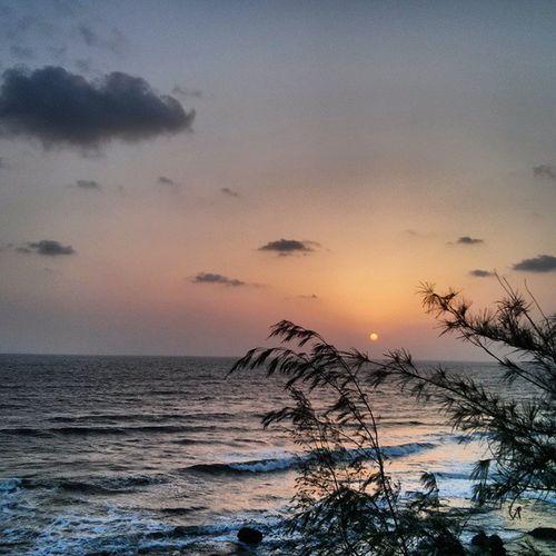 Love it ! Instaclick Instagood Instalike Instadaily Beach Sunset_madness Summer Sunset Konkandiaries Konkan