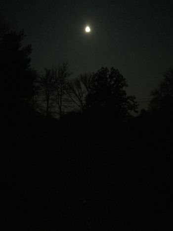 Night Moon Moonlight Dark Nature Sky Beauty In Nature Outdoors No People
