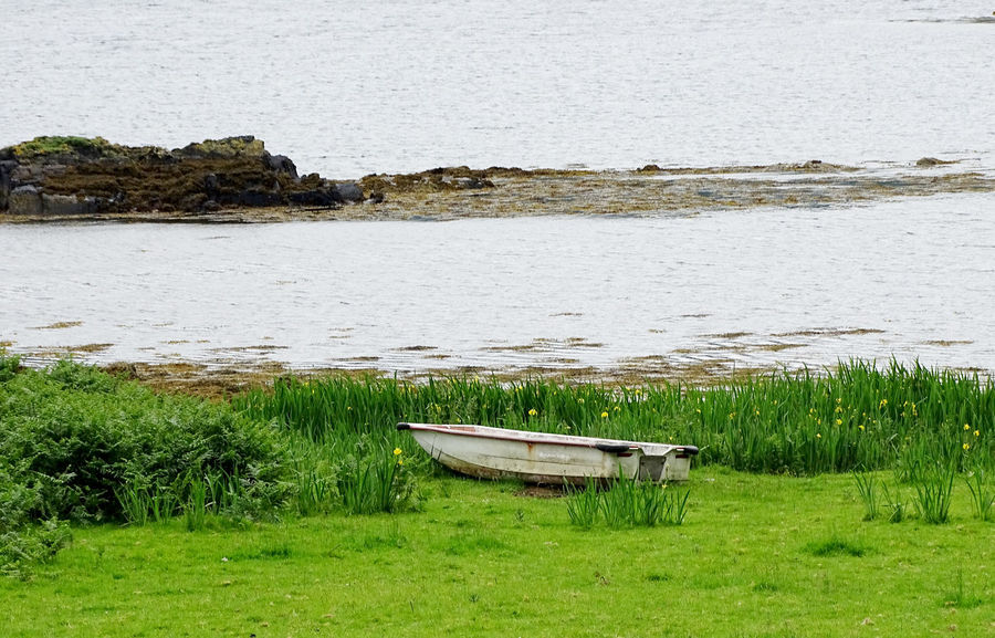 Water Grass Tranquility Nautical Vessel Boat Beauty In Nature Rural Scene Tranquil Scene Atlantic Ocean Scotland Landscape_Collection Tranquility Freshness Beauty In Nature Landscape Nature EyeEm Gallery EyeEm Best Shots
