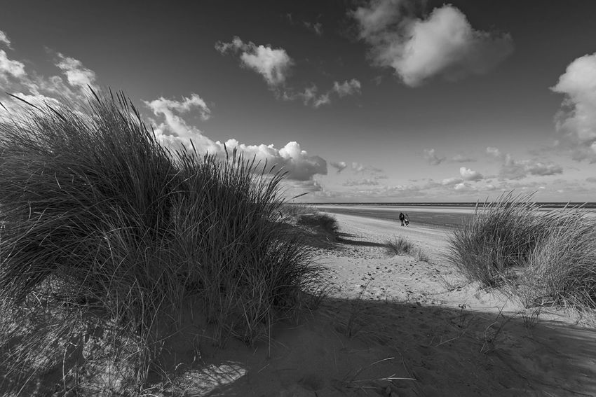 Beach Days Wells-next-the-Sea Norfolk Uk Sky Beach Sand Nature Tranquil Scene Cloud - Sky Tranquility Scenics Beauty In Nature Outdoors Horizon Over Water Sand Dune Marram Grass Grass Sea