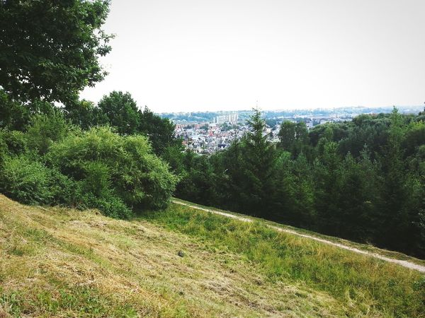Nature_perfection Green Nature Lithuania Nature <3 Kaunas City View  New Here(: