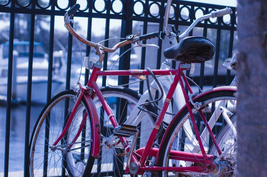 Bicycle Transportation Stationary Metal Land Vehicle Mode Of Transportation No People Railing Lock Safety Parking Day