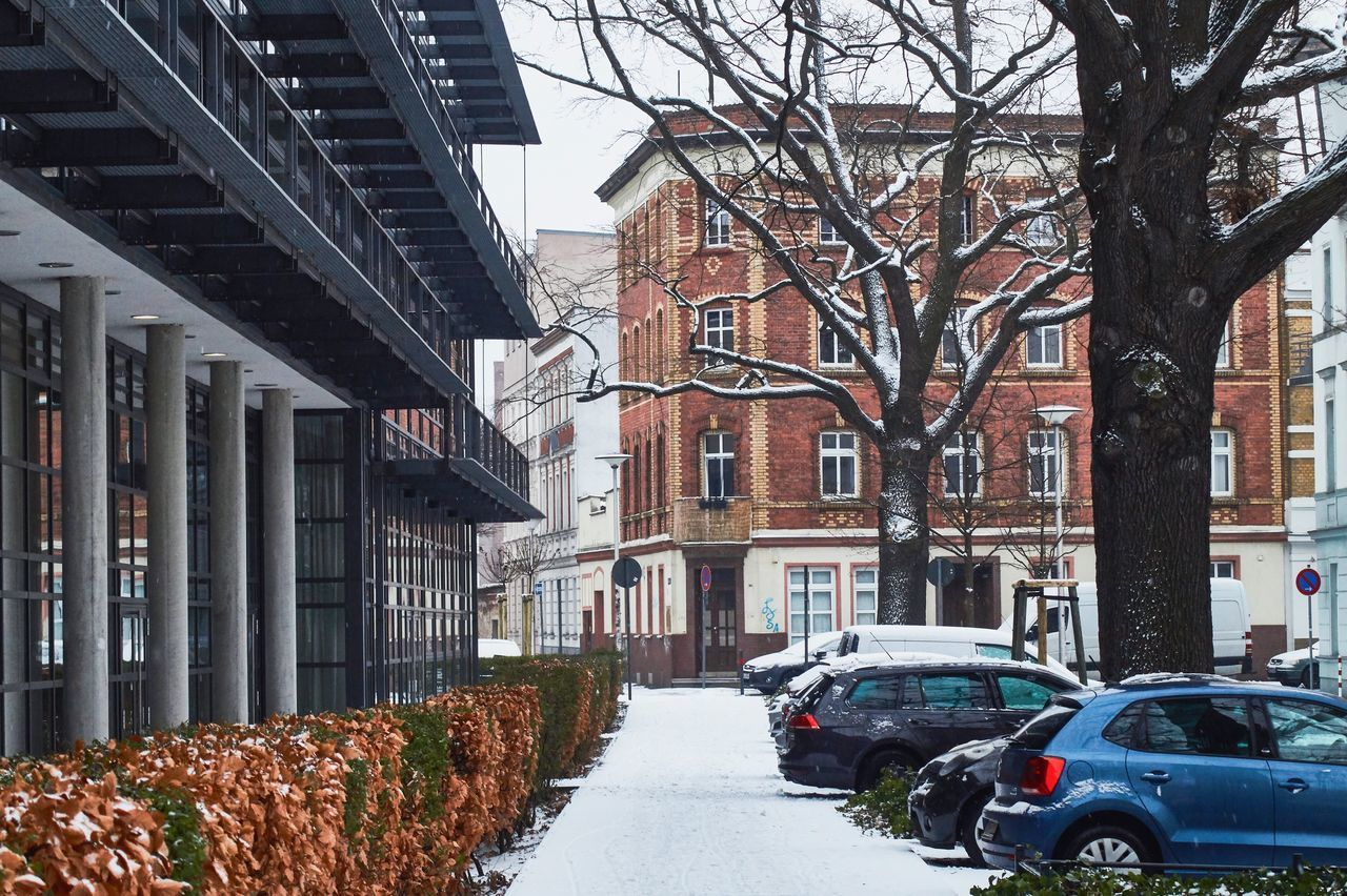 architecture, built structure, motor vehicle, building exterior, transportation, car, mode of transportation, tree, land vehicle, plant, city, building, nature, winter, day, cold temperature, street, bare tree, snow, outdoors, no people, change
