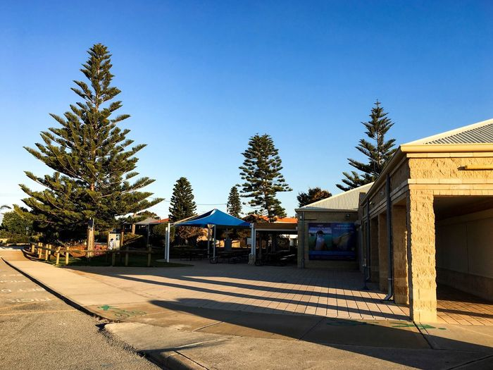 Western Australia Travel Destinations Rockingham Wild Encounters October 2016 Tree Sky Architecture Building Exterior Built Structure Plant Clear Sky Sunlight Shadow Blue Day Outdoors No People Copy Space
