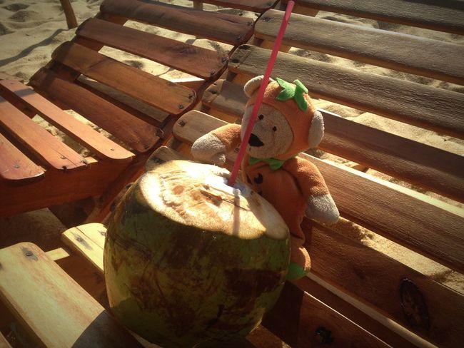 Abobrinho Abobrinho Na Praia Caraiva Beach Coconut