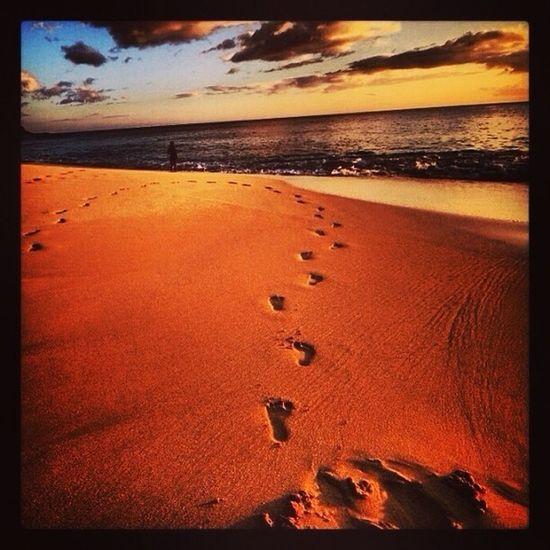 Yokohama Beach, North Shore, Oahu, Hawaiʻi.