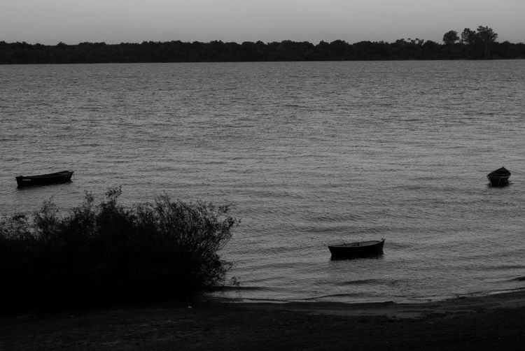 Water Silhouette No People Outdoors Tranquility Nature Day Tree Sky Black And White Blanco Y Negro